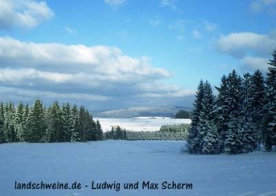 Bildergalerie_landschweine_de_008