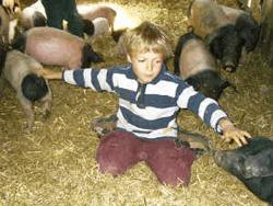 Tiertherapie - Berührungskontakt mit Lebewesen